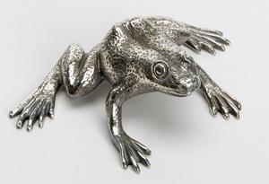 Mazzucato frog