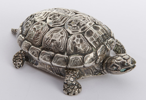 Cusi turtle box